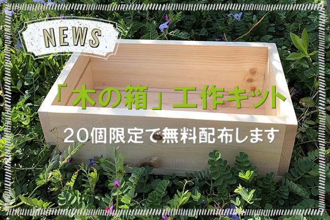 「木のはこ」特別企画!木の箱工作キットプレゼント!